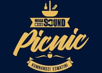 Megasound Picnic